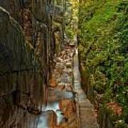 Looking Down Flume Gorge Art Print