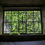 Looking Through Old Basement Window On To Vibrant Green Foliage Fine Art Photography Print  Art Print