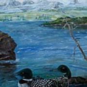 Loon Family And Morning Mist Art Print