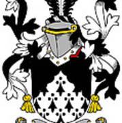 Looney Coat Of Arms Irish Art Print