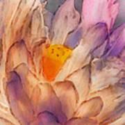 Lotus Watercolor Art Print by Jill Balsam