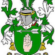 Loughnan Coat Of Arms Irish Art Print