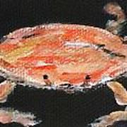 Louisiana Crab Art Print by Katie Spicuzza