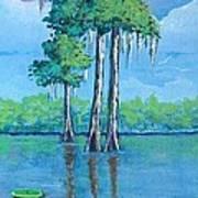 Louisiana Cypress Art Print