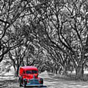 Louisiana Dream Drive Bw Art Print