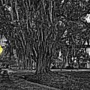 Louisiana Moon Rising Monochrome 2 Art Print