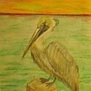 Louisiana State Bird Art Print