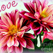 Love And Flowers Art Print by Kathy  White