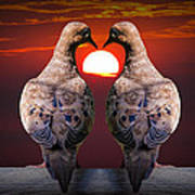 Love Dove Birds At Sunset Art Print