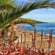 Love In Laguna Beach By Diana Sainz Art Print