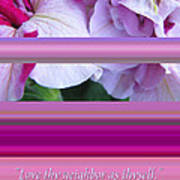 Love Thy Neighbor - Petunias And Verse Art Print