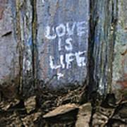 Love Is Life Art Print