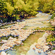 Low Flowing Creek Art Print