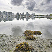 Low Tide At False Creek In Stanley Park Art Print