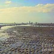 Low Tide At Siesta Beach Art Print