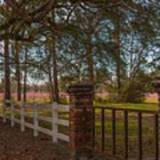 Lowcountry Gates To Boone Hall Plantation Art Print