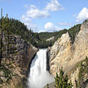 Lower Falls In Yellowstone National Park Art Print