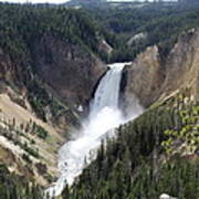 Lower Falls Yellowstone Art Print