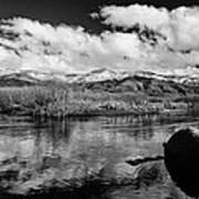 Lower Owens River Art Print