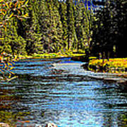 Lower Truckee River Art Print
