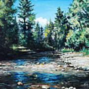 Lowry Creek Run Art Print by Mike Worthen