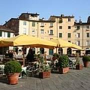 Lucca Piazza Del Mercato  Art Print
