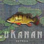 Lukanani Art Print