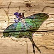Luna Moth Worm Wood  Art Print