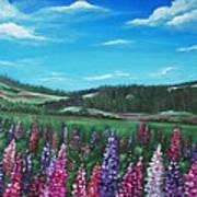 Lupine Hills Art Print