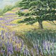 Lupines In May Art Print