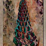Lupins 10 Art Print