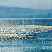 Lyme Regis Under Glass Art Print