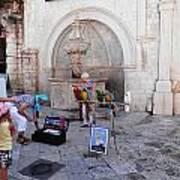 Macaws In Dubrovnik Art Print
