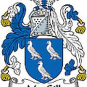 Macgill Coat Of Arms Ulster Ireland Art Print