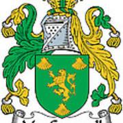 Macgrannell Coat Of Arms Irish Art Print