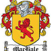 Machale Coat Of Arms Irish Art Print