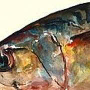 Mackerel Fish Art Print