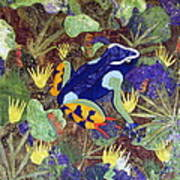 Madagascar Mantella Art Print by Lynda K Boardman