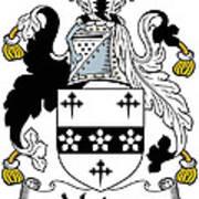 Madoc Coat Of Arms Irish Art Print