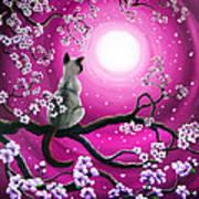 Magenta Morning Sakura Art Print