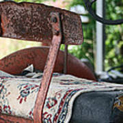 Magic Carpet Ride Southern Style Art Print
