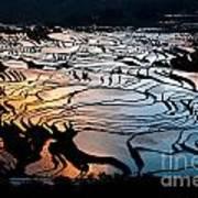 Magnificent Rice Terrace Art Print