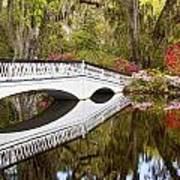 Magnolia Gardens' Bridge Art Print
