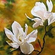 Magnolia In Spring Art Print