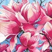 Magnolia Medley Art Print