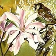Magnolias With Sparrows Art Print