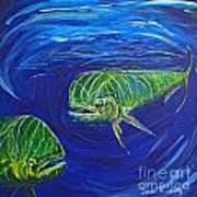 Mahi Mahi Couple Art Print