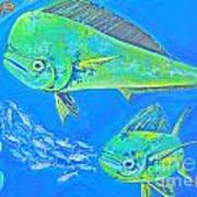 Mahi Trio Art Print