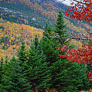 maine 57 Baxter State Park Loop Road Fall Foliage Art Print