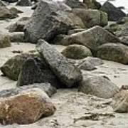 Maine Beach Rocks Art Print
